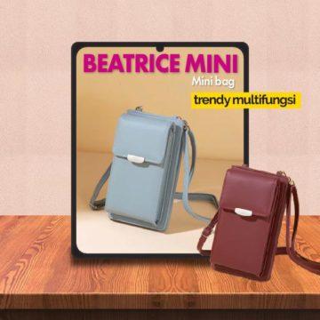 Video Review Mini Bag Trendy JH Beatrice